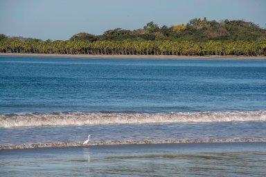 Playa Carrillo 4